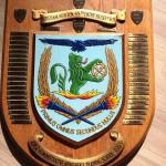 45th Entry Shield